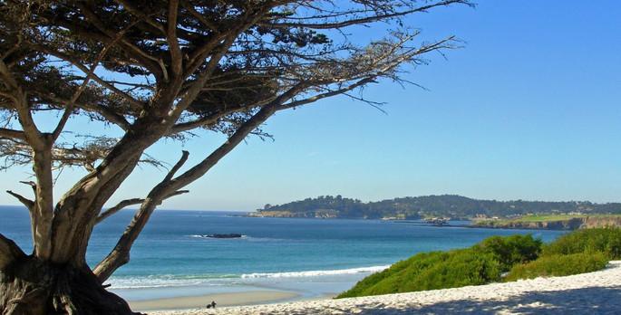 Briarwood Inn Bed Breakfast Carmel By The Sea California
